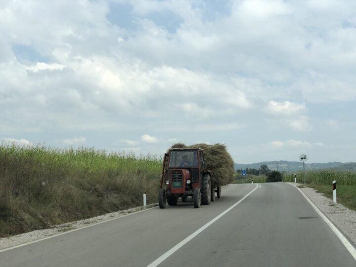 Poljoprivreda, foto: M. Miladinović