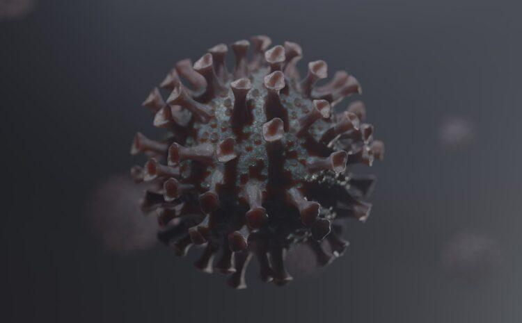 U Srbiji opada broj novozaraženih koronavirusom!